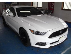 FORD MUSTANG 50YEARS EDITION